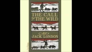 The Call of the Wild - audiobook - part 1