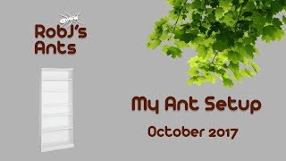 My Ant Setup (October Update) Progress This Year