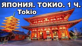 Япония. Токио. Что интересного можно увидеть в стране восходящего солнца? Где отдохнуть зимой? 日本東京都