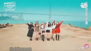 (G)I-dle what's your name MV