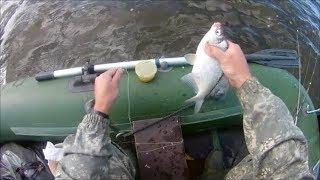 Все о ловле леща на финском заливе
