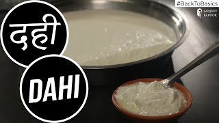 How to make Dahi | #BackToBasics | Sanjeev Kapoor Khazana