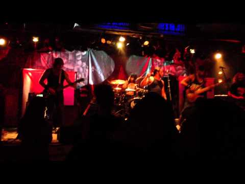 Bellicose Covering Slaughtered by Pantera