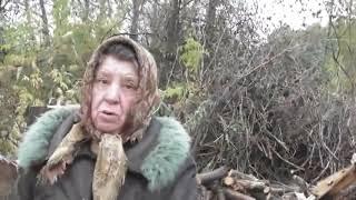 Люба и Надежда  трудятся у Романа.  Кормилицы в поле за молоком.  04.10. 2017