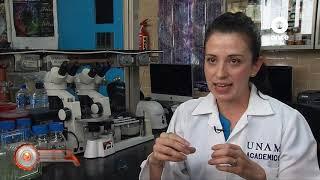 Factor Ciencia - Tecnología ósea 1
