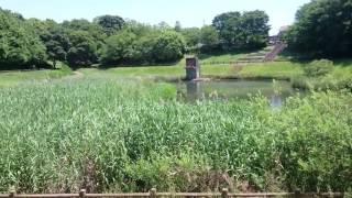 美しが丘近隣公園千葉県四街道市の近隣公園は穴場スポットだった☆おやじ散歩