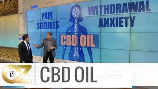 How CBD Oil Impacts the Body