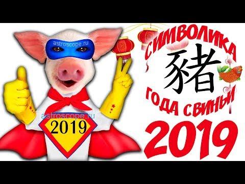 Символ 2019 года Свинья: символика образа Жёлтой Земляной Свиньи