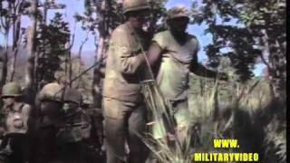 Ia Drang Valley, 1st Cavalry Division (Air Mobile) Vietnam War, 1965, Army