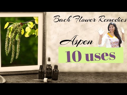 Aspen Bach flower remedy -10 uses -unknown fear, Goodluck, Anxiety, nightmare, bad intuitions
