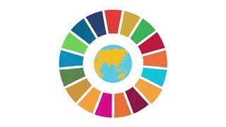 Monitoring the 2030 Agenda for Sustainable Development: the role of  FAO
