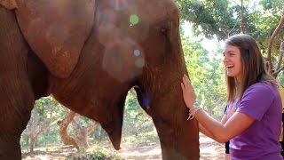 Voices from the Village: Elephant Conservation and Ethical Tourism