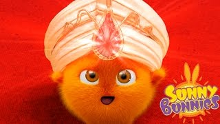 Cartoons for Children | Sunny Bunnies THE SUNNY BUNNIES FORTUNE TELLER | Funny Cartoons For Children