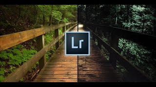 How to Create DARK & MOODY Style Photos in Lightroom