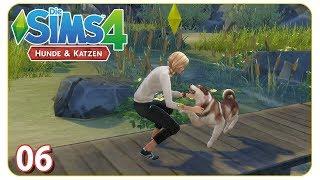 Betty adoptiert einen Streuner #06 Die Sims 4: Hunde & Katzen - Let's Play