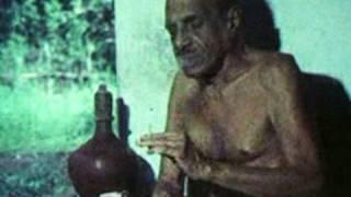 Vaikom Muhammad Basheer, Malayalam writer