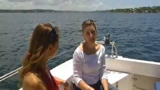 Boat cruiser hire sydney harbour