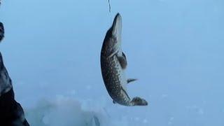 Рыбалка в хмао кондинский район