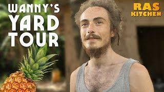 Scottish Rasta Wanny's Yard Tour! Mokko's Neighbour in Jamaica