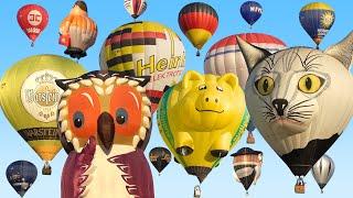 Hot Air Balloon Mass Ascent | Balloon Festival Barnstorf 2019