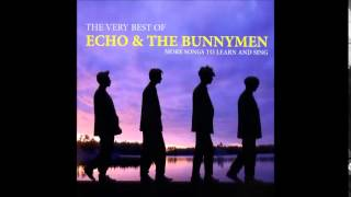 Echo & The Bunnymen -  Everything Kills You