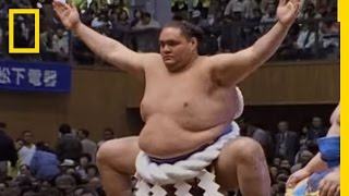Sumo Wrestling 101 | National Geographic thumbnail