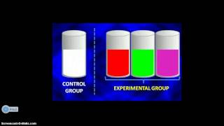 UNDERSTANDING A CONTROLLED EXPERIMENT