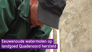 Watermolen gerestaureerd op landgoed Quadenoord (Omroep Gelderland)