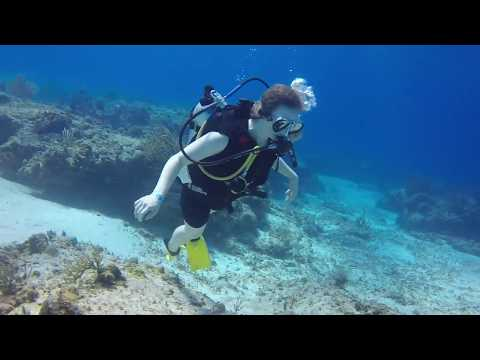 Scuba Diving with Kaitlin, Austin, and Blue Reef Divers