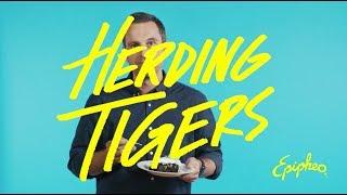 Leading Creative Teams is Like Herding Tigers
