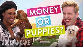 video thumbnail People Choose Between Money or Puppies | The Science of Generosity