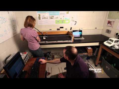 FlipperBot Video
