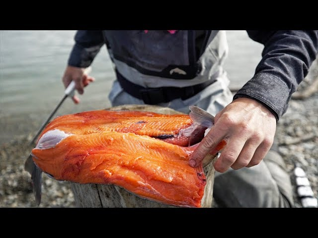 Eating RAW Fish In The Wild! (Sushi)