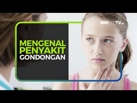 Video MENGENAL PENYAKIT GONDONGAN
