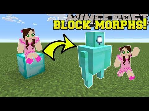 Minecraft: BLOCK MORPHS!!! (BLOCKS TURN INTO MOBS!) Mod Showcase