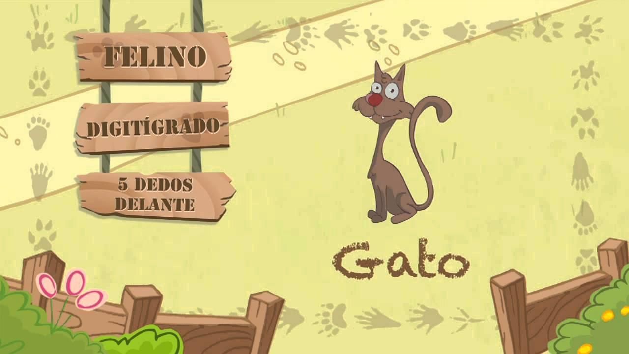 Las características del GATO