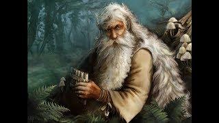 КАМЕРА ЗАСНЯЛА ЛЕШЕГО.CAMERA MISTRESSED THE SPIRIT OF THE FOREST