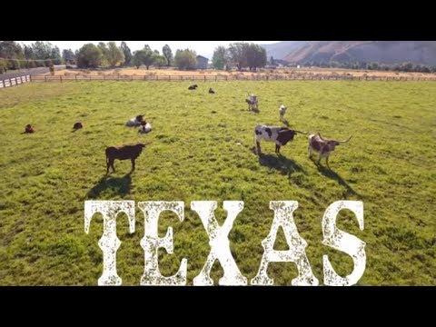 sveučilište u Texasu kod druženja u Dallasu