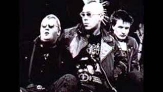 The Exploited.alternative