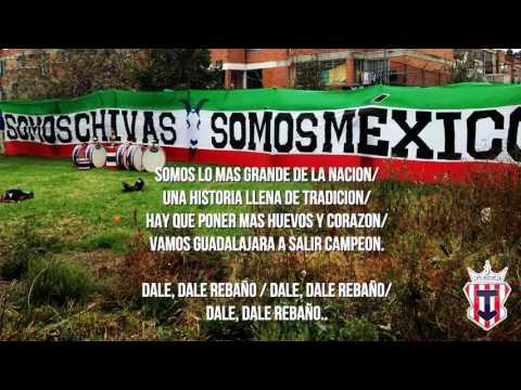 """""""Nuevo tema. Vienés y te vas - Los Askis / Barra Insurgencia"""" Barra: Barra Insurgencia • Club: Chivas Guadalajara"""