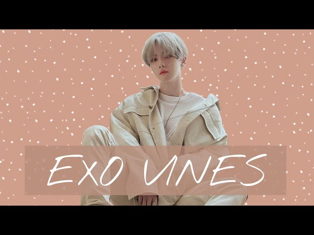 Exo vines to watch while waiting for new exo content 😢