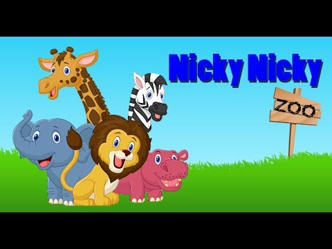 Nicky visits the Zoo