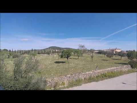 Chalet en Vilafranca de Bonany - Mallorca (Spain)