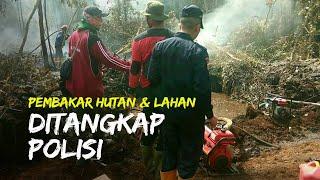 Polisi Tangkap Dua Pelaku Pembakaran Hutan dan Lahan di Pekanbaru