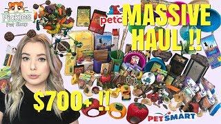 INCREDIBLY MASSIVE PET HAUL!