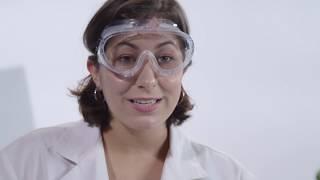 Sheep Eye Dissection: The Eye, Our Superhero