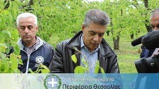 Ο περιφερειάρχης Θεσσαλίας στις πληγείσες από το χαλάζι περιοχές της επαρχίας Τυρνάβου