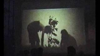 preview picture of video 'Kleinbaumgarten | Entstehung'