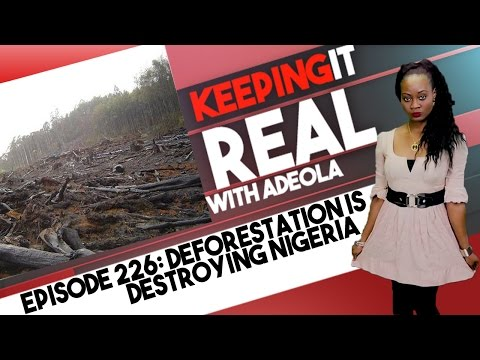 Keeping It Real With Adeola - Eps 226 (How Deforestation Is Destroying Nigeria, Africa)