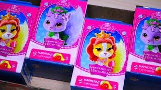 Королевские Питомцы Принцесс Диснея от Sweet Box Palace Pets Disney Princess